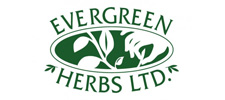 evergreen-herbs